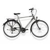 Gazelle Arroyo Plus Rower trekkingowy  Mężczyźni szary/biały